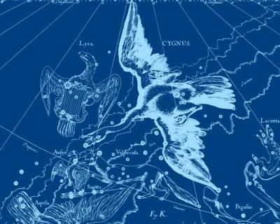 Созвездие Лебедя для Северного