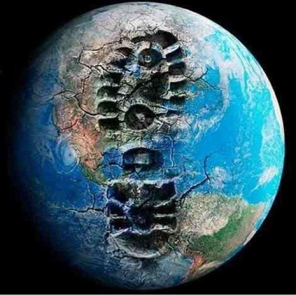 Что уничтожил человек на планете