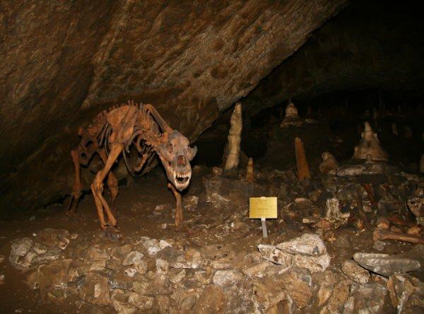 Где находится пещера танталова