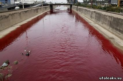 Кроваво красный цвет